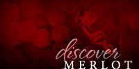 Discover Merlot
